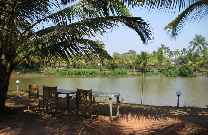 Om Lake Resort in Arambol